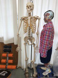 人体模型用具移動